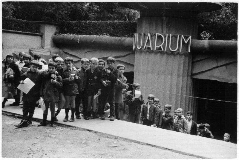 11 1968 sortieaquariumparis
