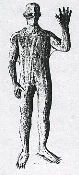 2-humanoide-ar.jpg