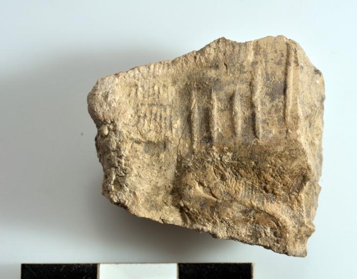 8excavating cretules tell as sadoum marad irak 11 2019