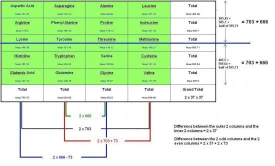 amino5.jpg