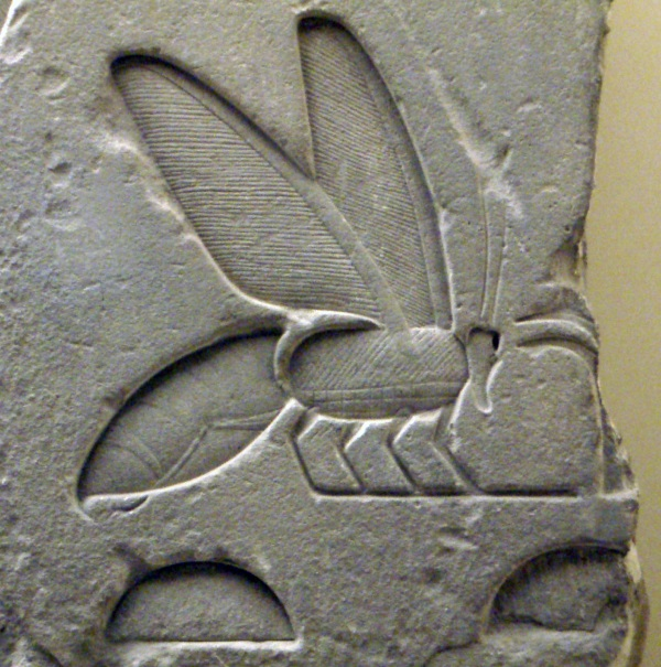 Ancientegyptianrelief beehieroglyph rom1 600x605