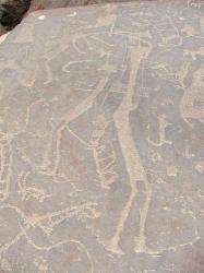 arabie-saoudite-petroglyphe.jpg