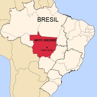 Bresil hautxingumap