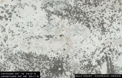 campeche-satelliteraw4.jpg
