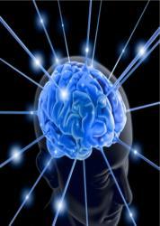 cerveau-illumine-por-adrines-arteyfotografia.jpg
