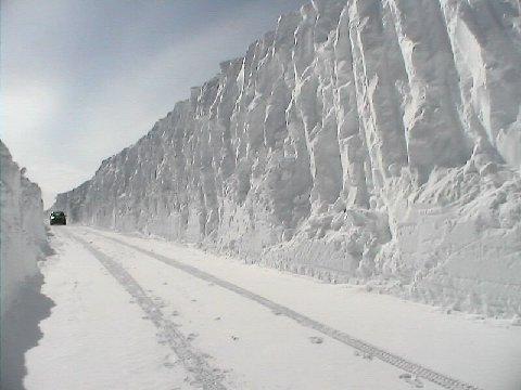 chemin-tempete-de-neige.jpg