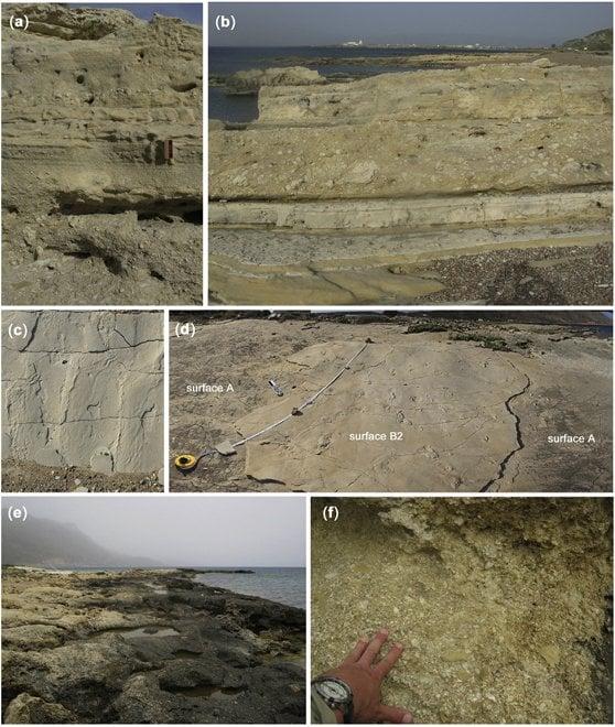 Crete empreintesfossiles 5 7ma5