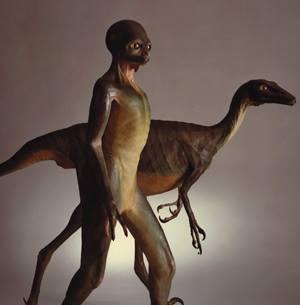 Dino reptilien 1