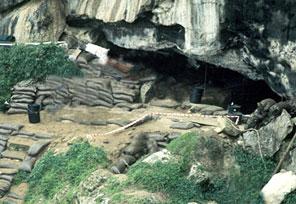 entree-grotte-blombos.jpg