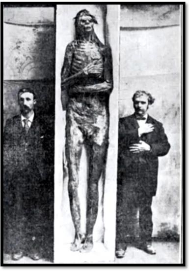 giant-skeleton-unknown.jpg