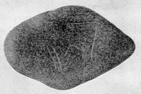 glozel-1-4.jpg