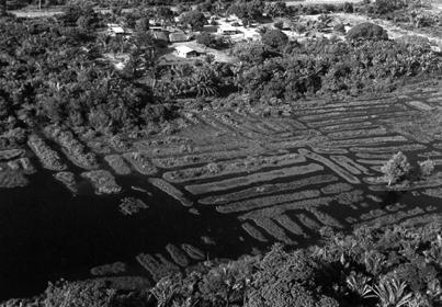 Guyane restesamerindiens piliwa embouchuredumana