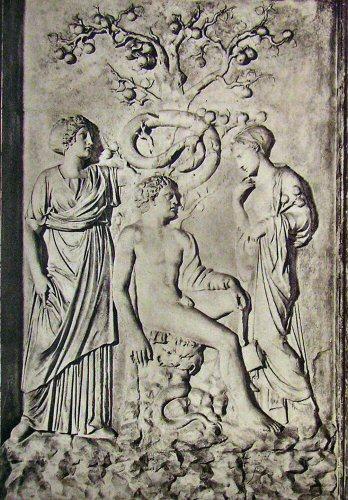 Heracles hesperides