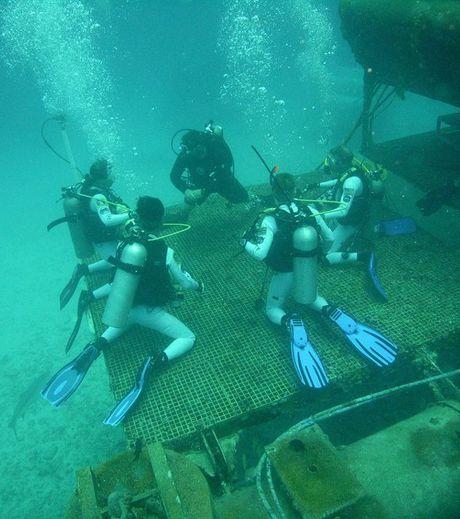 les-aquanautes-s-entrainent-sur-l-un-des-portiques-de-l-aquarius-credits-nasa.jpg