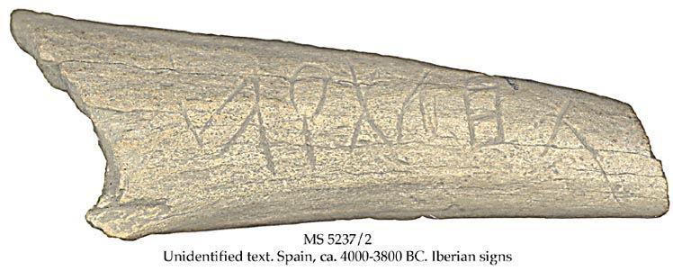 Ms5237 2