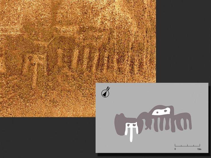 Nasca newglyphe