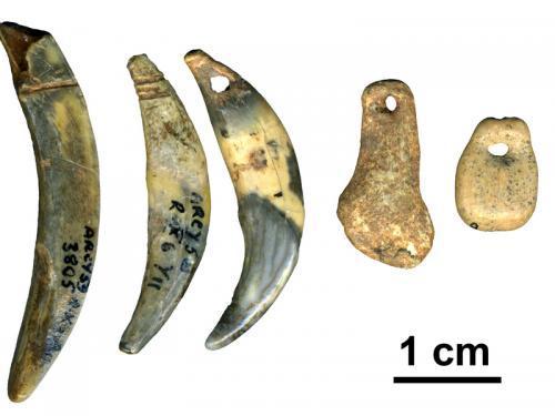 neanderthals-tools.jpg