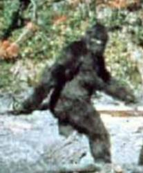 patterson-bigfoot-jpg.jpg