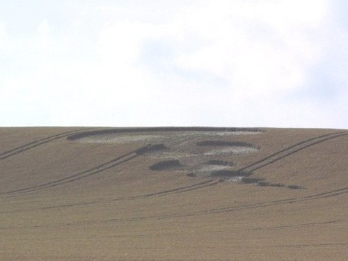 photo-ufo-crop-circles-ovni-morganhill.jpg
