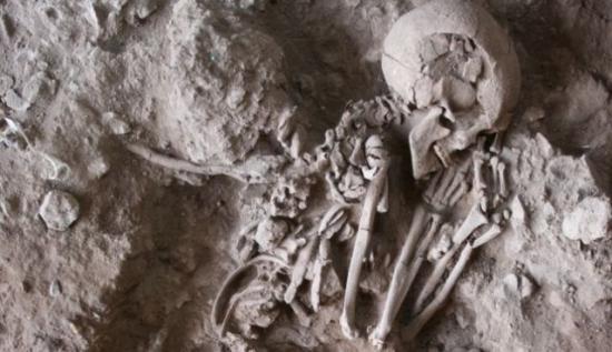 Plantes dans les rituels il y a 13000 ans natoufiens