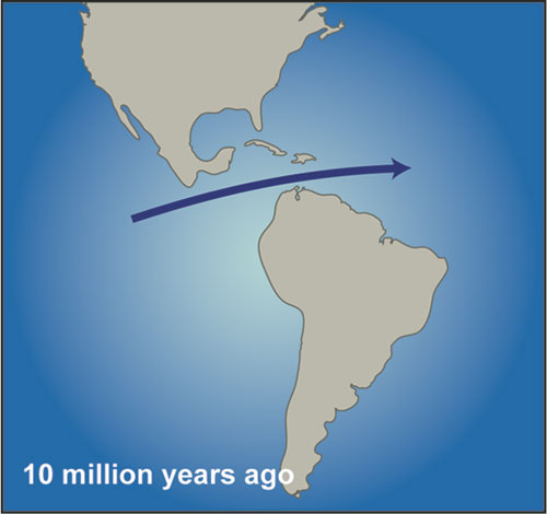 rtemagicp-cas-miocene-10-millions-annees-whoi-txdam30273-400872.jpg