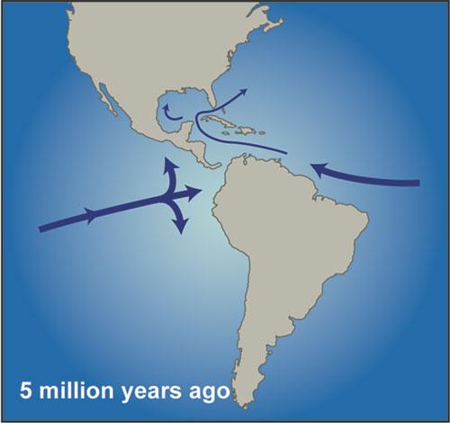 rtemagicp-cas-miocene-5-millions-annees-whoi-txdam30274-400872.jpg