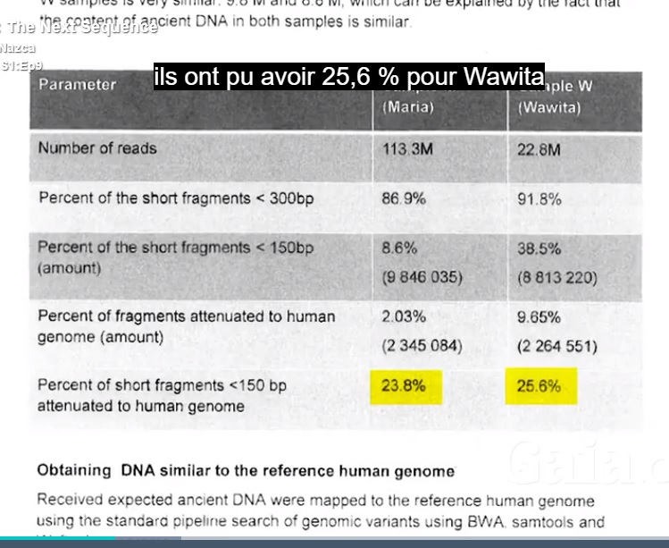 Sequencesmaria wawita humangenome
