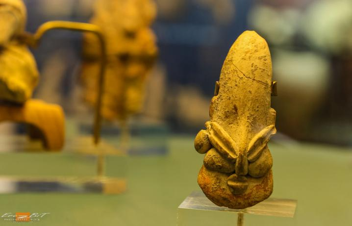 Shaar museum