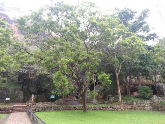 sigiriya-jardin4.jpg
