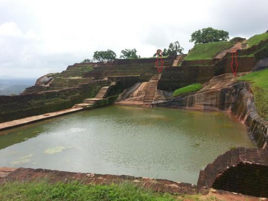 sigirya-sri-lanka-niveau5-panorama-piscine3.jpg
