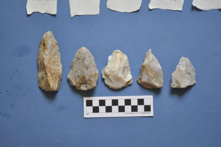 Spearheads mousterian neandertal