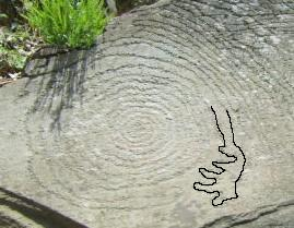 Spiralepiodao2