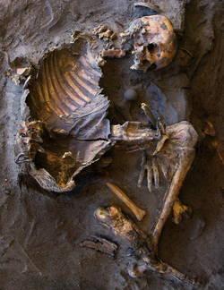 squelette-stoneage-rcastelli.jpg