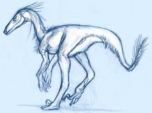 stenonychosaurus-by-sitar.jpg