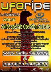 suricate6-2012.jpg