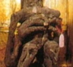 Temple de daijoin detailmain3doigts