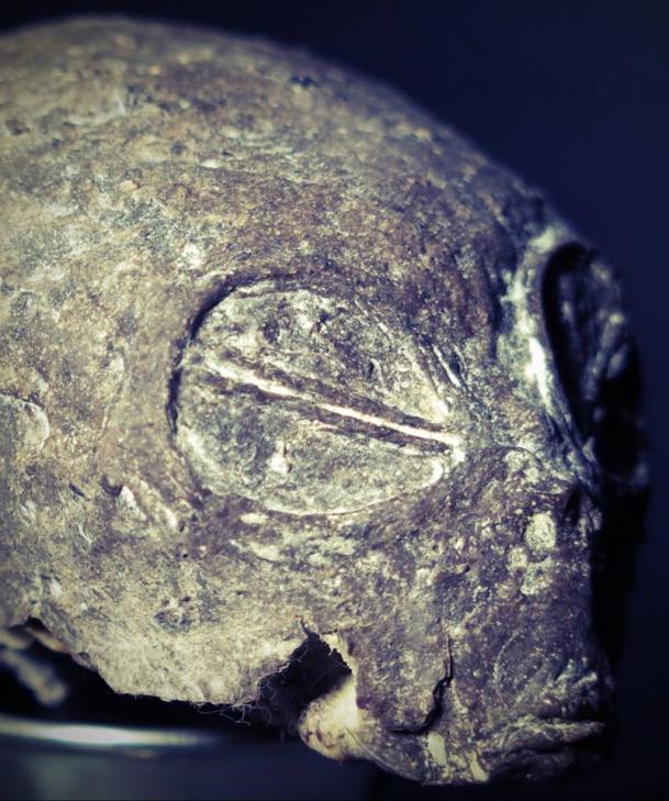 Tetecoupee detail
