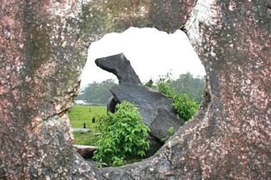 Tropicalstonehenge02
