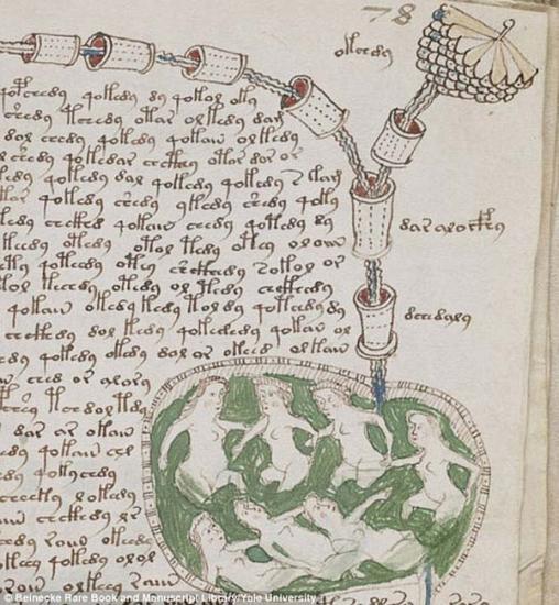 Voynich 6