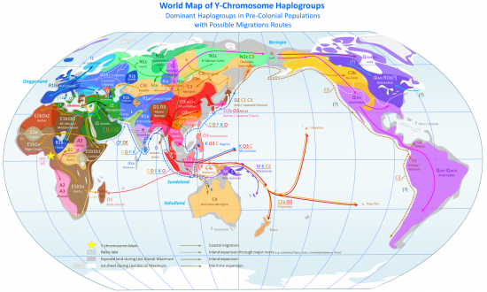 World map of y dna haplogroups