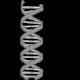 L'ADN sera-t-il le support de stockage ultime de l'humanité ?