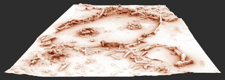 879389 restitution 3d des structures de la grotte de bruniquel