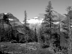 agassiz-glacier-2005-02.jpg