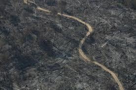 amazonie-incendies-monstrueux.jpg