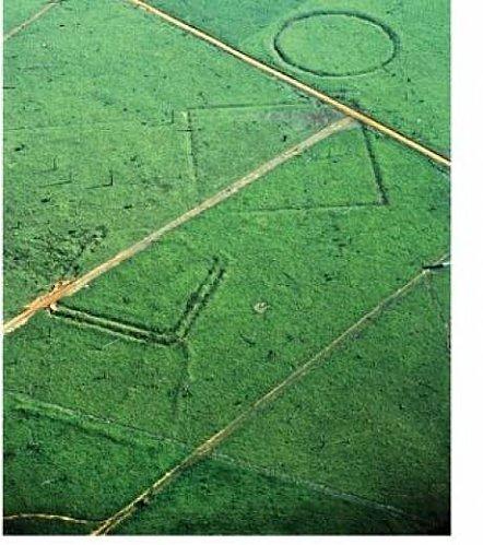 amazonie-partie-des-structures-geometriques-decouvertes-sous-la.jpg