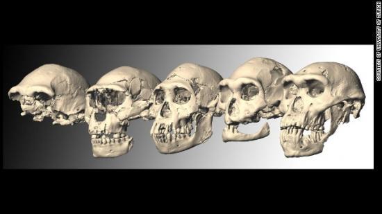 ancient-skulls-georgie.jpg