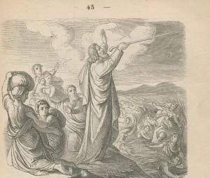Baton de moise 2 bibleillustree