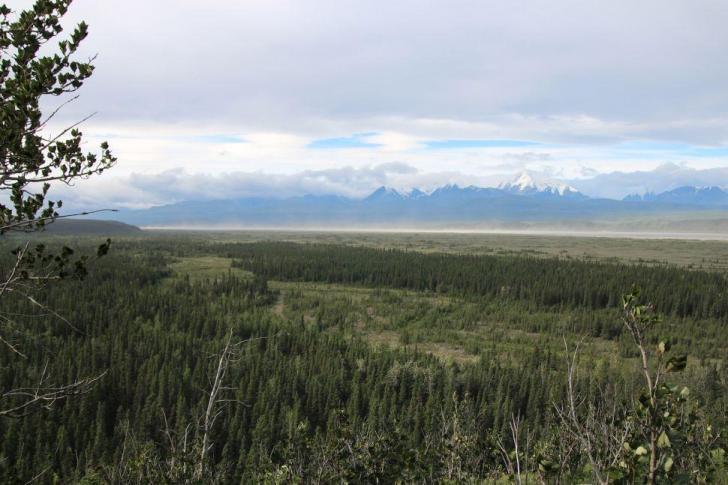 Beringieactuelle alaska