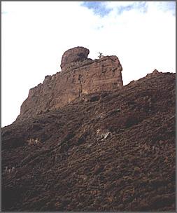 Canaryroque bentayga