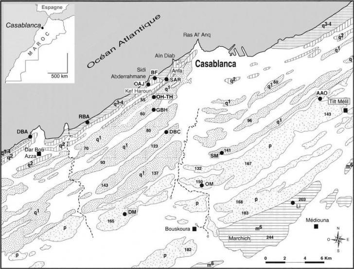 Carte des formations mio pleistocenes de la sequence de casablanca dessin d lefevre